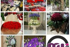 گل فروشی ویکتوریا - mashhadwomen